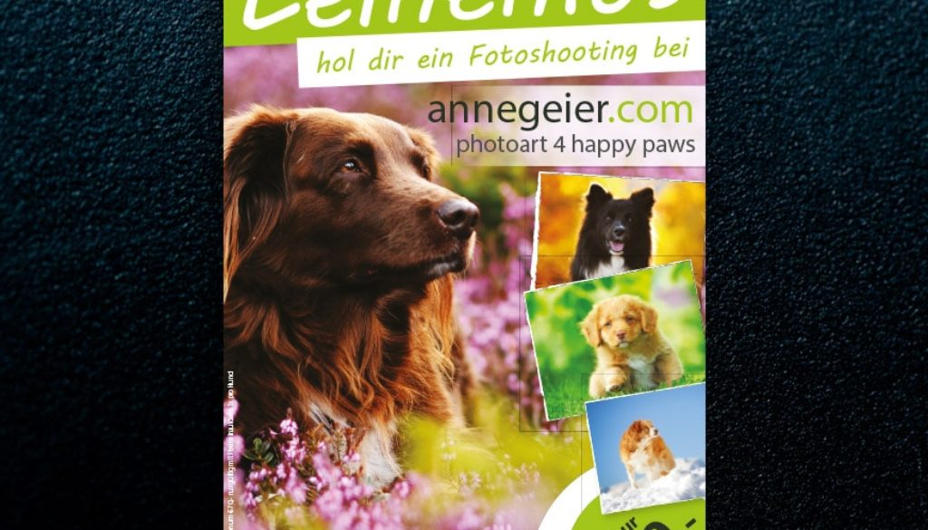 sawerbung-referenzen-anne-geier-flyer